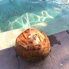 Coconut drinks by the pool at Villa del Palmar Loreto. #VDPLFam #villadelpalmarl // www.cupcakesandcutlery.com