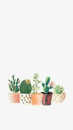 Wallpaper - Fond d'écran cactus – Kaktus Hintergrund – Bildschirmschoner Cactus Backgrounds, Cute Backgrounds, Cute Wallpapers, Wallpaper Backgrounds, Wallpaper Ideas, Iphone Wallpaper 8 Plus, Wallpaper Lockscreen, Music Wallpaper, Kawaii Wallpaper