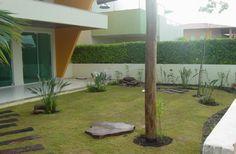 Divulgação/ Bem Verde Horta e Jardim