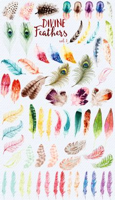 Divine Feathers - watercolor clipart by StudioDesset on @creativemarket