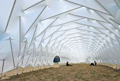 A pneumatic, inflated structure with innovative use of struts. The structure is not a classic tensegrity structure, with clearly isolated tendons, though its use of membrane is arguably a continuous tension network.