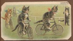 Victorian Folding Die Cut Xmas Card: Cat Cycle Race: The Finish. Helena Maguire.
