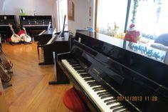 Bom dia! Pianos acústicos (de cauda e verticais) e digitais, temos uma boa opção para si. Venha ao Salão Musical de Lisboa na Rua da Oliveira ao Carmo 2, ou visite o website www.salaomusical.com