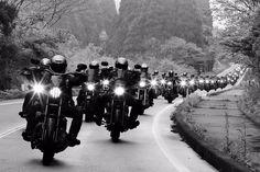 #zipangus #blackandgold #blackgold #motorcycle #syndicate #ms #harley #National #KYOTO #2016 #clubbike