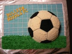 Soccer Ball in Goal By Miffy on CakeCentral.com