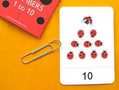 Number Flash Cards 1 to 10 - Mr Printables