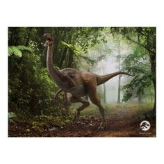 Jurassic World Gallimimus Poster , Jurassic World Movie, Jurassic Park Party, Jurassic World Dinosaurs, Jurassic World Fallen Kingdom, Dinosaur Posters, Les Reptiles, World Movies, Falling Kingdoms, Kids Party Supplies