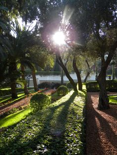 Sunshine at the Ba'hai Gardens, Haifa, Israel...what a place to think of where we come from...I don't think I could help but think of how much God loves me here.