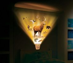 For the boy! Cabela's Wildlife Encounter Light 'n Sound Wallscape by Wild Walls I want it even though I'm not a boy Baby Boy Rooms, Baby Boy Nurseries, Baby Room, Kids Rooms, Boys Room Decor, Kids Bedroom, Bedroom Ideas, Hunting Bedroom, Camo Rooms