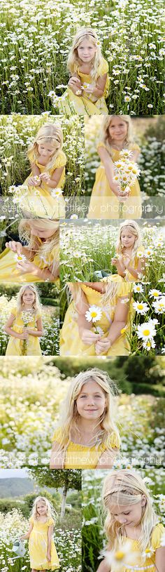 Daisy; meadow; spring; sun; sunset; sunrise; yellows photo shoot