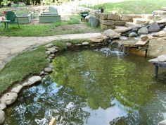 Edging the pond: must it be rocks?