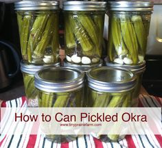 how to can orka