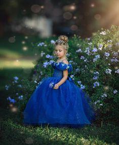Cinderella Dress by Irina Chernousova /