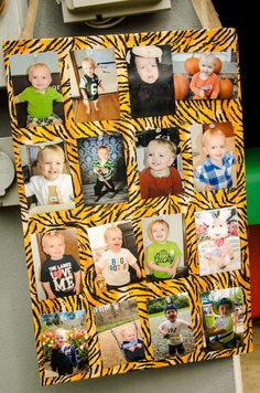 Safari / Jungle Birthday Party Ideas | Photo 7 of 48 | Catch My Party