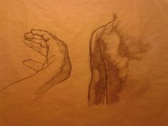 hand and torso sketch from life, 2015