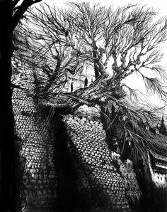ohbender:  The Tree  Basically, when I think Warhammer, I think of Miller's stuff.