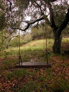 diy tree swing...reminds me of camp out :)