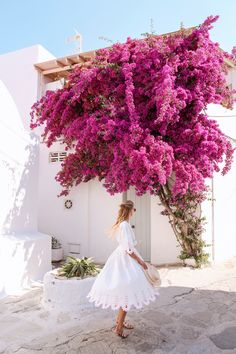 Flowers on Mykonos | Greece http://www.ohhcouture.com/2017/07/monday-update-53/ #leoniehanne #ohhcouture
