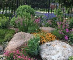 Mix large rocks with flowers in beds.
