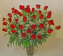 '36 Long Stem Red Roses. Peoples Flowers Roses, Red Roses Albuquerque.  Three dozen of our most elegant roses are sure to impress!  http://www.peoplesflowers.com/product.cfm/iteID/3973