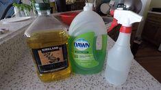 Bug Spray For House, Bug Spray For Plants, Garden Bug Spray, Plants That Repel Bugs, Plant Bugs, Plant Pests, Garden Bugs, Garden Pests, Aphid Spray Homemade