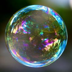 I really like the idea of this photo. I like how the surrounding area has been reflected in the bubble. I also like soft swirly texture of the bubble's surface.