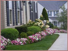 Monumental How To Landscape A Small Yard