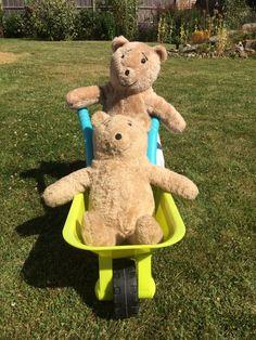 Humphrey pushing Clarence in the barrow Teddy Bear, Toys, Animals, Activity Toys, Animales, Animaux, Clearance Toys, Teddy Bears, Animal