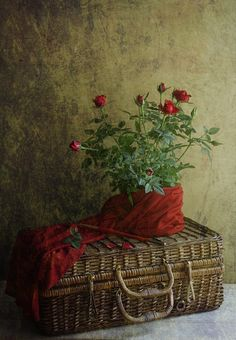 Vintage wicker pic-nick basket - we have the exact same one, love them and pick them up when ever they are cheap enough and in good condition