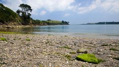 Grebe Beach - Helford River