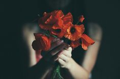 The ballad of the red flame flower by Anna O. Photography