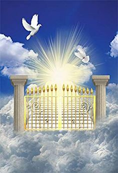 OFILA Heaven Gate Backdrop Doves Holy Spirit Peace Freedom Jesus Christian Religious Belief Church Event Background Vacation Bibble School Class Decoration Pray Lord God of Father Shoots Props Stairs To Heaven, Way To Heaven, Heaven Pictures, Jesus Pictures, Turandot Opera, Jesus Paid It All, Heaven's Gate, Saint Esprit, Prophetic Art