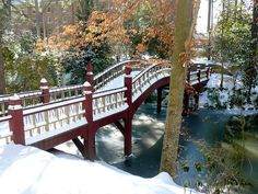 Crim Dell in the Snow by College of William & Mary, via Flickr