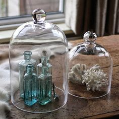 Large Glass Display Cloche by Magpie Living, the perfect gift for Explore more unique gifts in our curated marketplace. Glass Dome Display, Glass Domes, The Bell Jar, Bell Jars, Apothecary Jars Decor, Cloche Decor, Decorative Accessories, Glass Art, Clear Glass