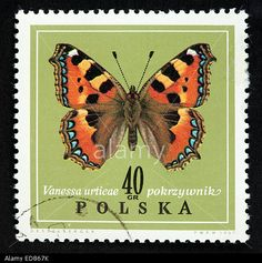 Polish Postage Stamp Stock Photo, Picture And Royalty Free Image ...