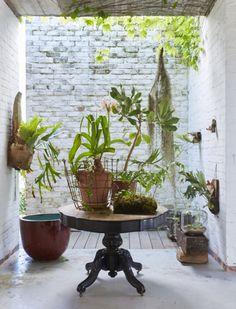 the botanical farmhouse January 2017 Photo Greg Cox Stylist Chrizanda Botha & Tiaan Nagel Belle Plante, Plant Art, British Colonial, Beautiful Space, Indoor Plants, Interior Inspiration, House Plants, Planting Flowers, Greenery