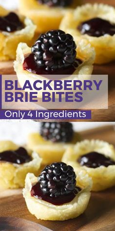 These Blackberry Brie Bites are the easiest appetizer ever! Just 4 simple ingredients makes a delicious party snack! These Blackberry Brie Bites are the easiest appetizer ever! Just 4 simple ingredients makes a delicious party snack! Brie Bites, Holiday Appetizers, Appetizers For Party, Simple Appetizers, Holiday Parties, Easiest Appetizers, Birthday Appetizers, Wine Appetizers, Brie Appetizer