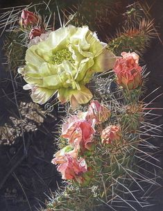 Eileen Nisler: Cactus Flower - I actually went to high school with Eileen. Her work is amazing.