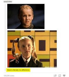 Image result for draco funny
