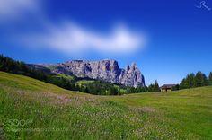 Summer on the Alpe di Siusi by steveland
