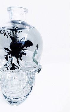 Use Crystal Head as a blank canvas for your cocktail creations. Photography by Jessica Van Leeuwen