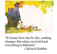 We need more Calvin and Hobbes around here - Album on Imgur