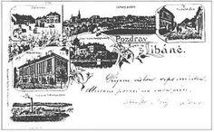Výsledek obrázku pro staré pohlednice z myslivosti