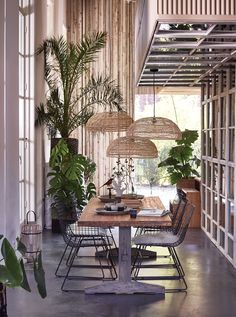 Bringing Conservatory Chic into the home with wire furniture, rattan hanging pendants, wood, metal and plants