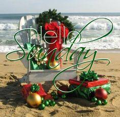 Happy Sunday coastal lovers ~