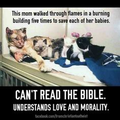 Atheism, Religion, God is Imaginary, The Bible, Morality, Love. This mom walked through flames in a burning building five times to save each of her babies. Can't read the Bible. Understands love and morality.