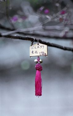 Ema 絵馬, a wooden tablet on which to write one's wishes.