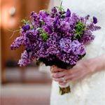 Pretty, pretty bridal bouquet colors :)