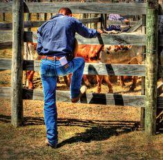 Cowboys Prayer Rodeo at Omarama South Island New Zealand  By Simon Schollum