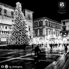 grazie a  @ig_bologna_ per aver inserito questa foto nella loro gallery / temporary repost  presents  I G O F T H E D A Y P H O T O   @n2r_outdoor  F R O M   @ig_bologna_  PLACE  Bologna centro  A D M I N   @guess_star_ S E L E C T E D    @guess_star_  F E A T U R E D T A G    #ig_bologna_ #bologna  F O L L O W U S    @ig_forli_cesena  @ig_rimini_  @ig_prato_ @ig_emilia_romagna @ig_toscana_ @ig_europa #ig_emilia_romagna #shotaward #phototag_it #igworldclub #foto_italiane #christmas…